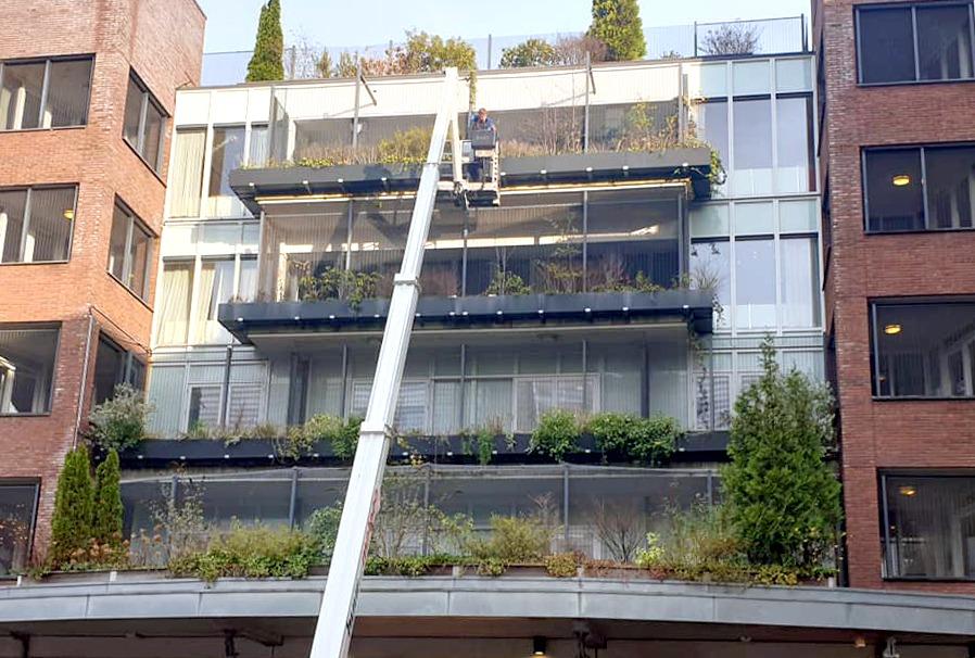 Aanleg van een verticale tuin. Aan de gevels en balkons bakken met beplanting en kleine bomen. Groene gevel.